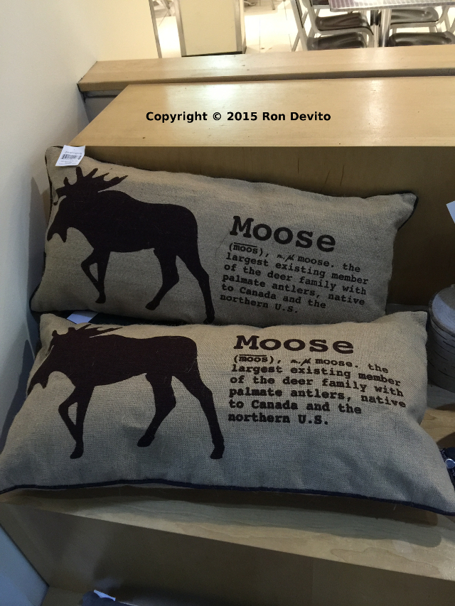 CN-Tower-Moose-Pillow