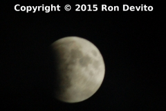 Supermoon eclipse. The moon is about 20% covered. Taken at Front St. behind the SIRT train shed September 27, 2015.