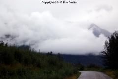 DSC_0211-copyright