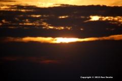 DSC_0107-copyright-wb