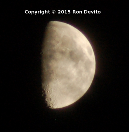 DSC_0156-copyright-closeup