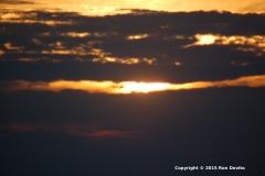 DSC_0107-copyright