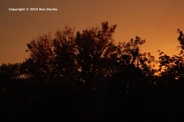 Amazing NYC Sunset -2