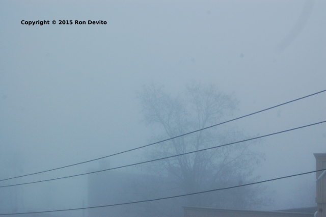 Christmas Pea Soup Fog