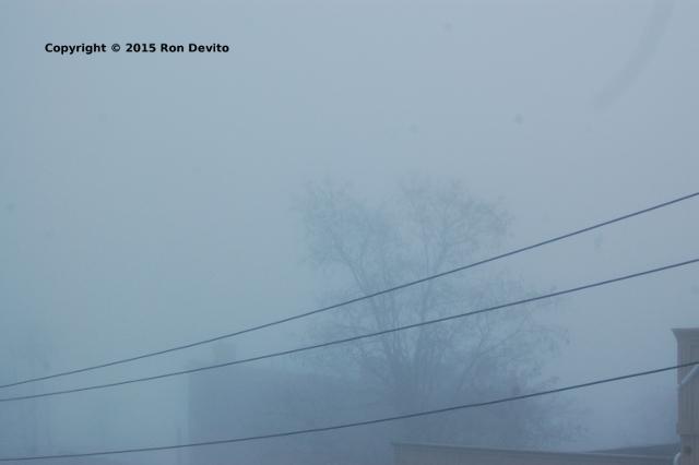 Christmas Pea Soup Fog